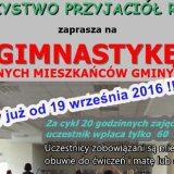 gimnastyka-2016